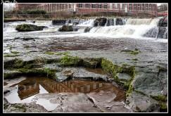 El río Cart es un afluente del río Clyde , Escocia. Al entrar en la ciudad de Paisley , el río cae sobre los rápidos llamados los Hammils, y fluye por la abadía de Paisley . Luego pasa por debajo de Gauze Street, el centro comercial Piazza y la estación de tren Paisley Gilmour Street, donde sale del puente de Abercorn, un ancho y alto puente arqueado de arenisca roja en Old Sneddon Street.