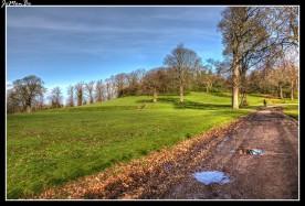 Los jardines de Ferguslie se pueden encontrar al oeste de la ciudad. El parque pertenecia a los antiguos jardines de la casa de la familia Coats, de la conocida empresa de J y P Coats, fabricantes de hilos en Paisley. Fue construida en 1828 por Hippolyte J Blanc y, convertida en un hospital en 1916 y demolida en 1920.