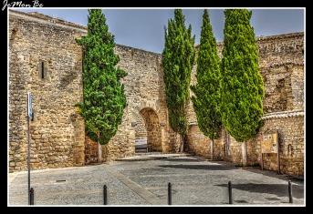 Puerta de Granada 00