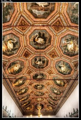 Sala de los Cisnes. Su nombre se debe a las pinturas renacentistas del techo, compuesto por 27 artesones de madera, decorados con cisnes blancos en diferentes posiciones.