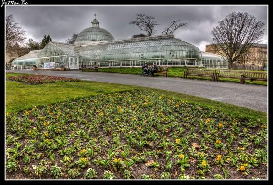 Glasgow Botanic Gardens, es un jardín botánico y parque público de unas 11 hectáreas (28 acres) de extensión con varios invernaderos, siendo de destacar « Kibble Palace » y el « Palm House », que se encuentra en Glasgow. La estructura del Kibble Palace presenta líneas curvas de hierro forjado y el vidrio apoyado en marcos de hierro fundido que descansan sobre columnas adornadas, que sobresalen de fundamentos de albañilería, cubriendo una extensión de 2137 m2. Inicialmente fue utilizado como lugar de exposiciones y conciertos. A partir de la década de 1880, se utiliza para el cultivo de plantas de clima templado. El grupo principal de plantas es la colección de helechos arborescentes de Australia algunos de los cuales tienen más de 120 años.