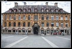 La vieja Bolsa de Lille se encuentra justo enfrente del Teatro de la Ópera. En 1651 la corporación de Lille, pide a Felipe IV rey de España autorización para construir una bolsa para los mercaderes en terrenos públicos de la ciudad. En 1653 se levanta la bolsa por el arquitecto Julien Destrée, eligió un estilo renacentista con detalles barrocos, que se hicieron patentes en toda la fachada. Tanto los techos como las ventanas cuentan con decoraciones clásicas y recargadas, que también fueron incluidas en el balcón principal y la puerta de acceso. En realidad, todo fue erigido en base a 24 viviendas que se unieron mediante una amplia galería, destacada por arcos de piedra. Aún se conserva sobre su puerta principal el escudo español sostenido por los dos leones de Lille. El patio renacentista de la Bolsa, es hoy en día refugio de jugadores de ajedrez que se retan tranquilamente bajo sus arcos, y vendedores de curiosidades y libros antiguos, muy alejados del bullicio de los corredores de bolsa de antaño