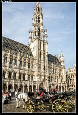 003 Grand Place Ayuntamiento