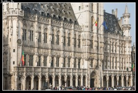 005 Grand Place Ayuntamiento