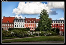 010 Rosenborg