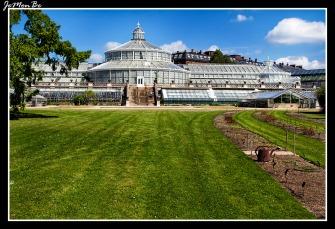 310 Jardin Botanico