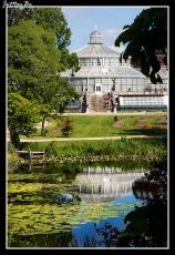 311 Jardin Botanico