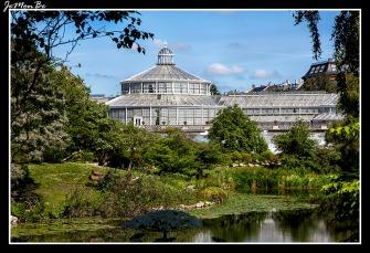 312 Jardin Botanico