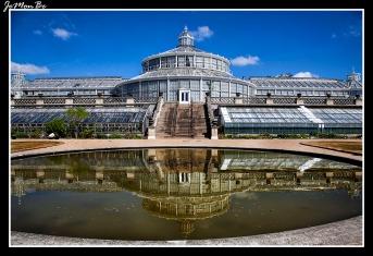313 Jardin Botanico