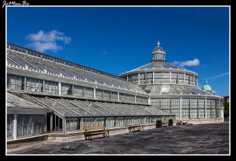 314 Jardin Botanico