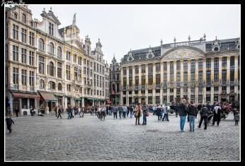 050 Grand Place Duques de Brabante y Casas del 20 al 28