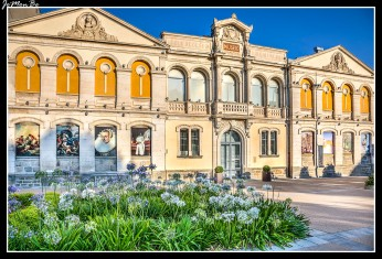 036 Museo de Bellas Artes