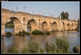 05 Puente de Palmas