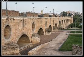 06 Puente de Palmas