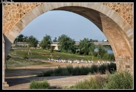 07 Puente de Palmas
