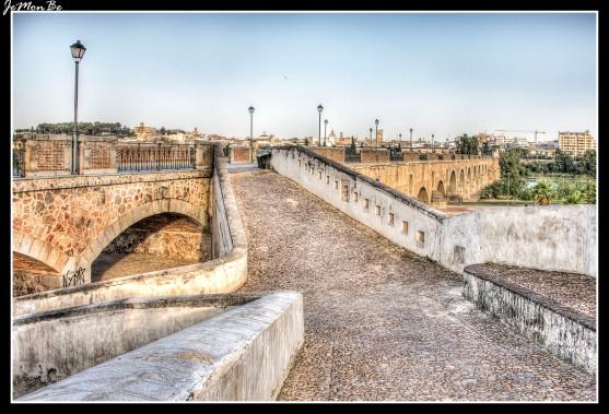 09 Puente de Palmas