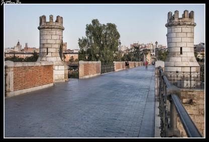 10 Puente de Palmas