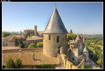 126 Castillo Comtal