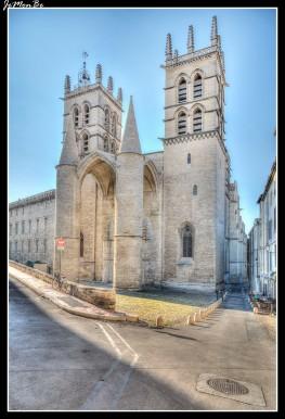 79 Catedral de San Pedro