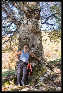 06 Bosque de Gamueta