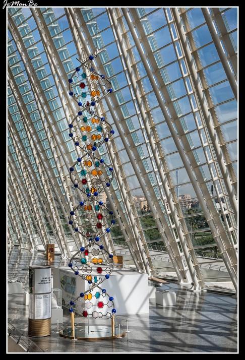 39 Museo de las Ciencias Príncipe Felipe