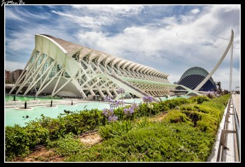 40 Museo de las Ciencias Príncipe Felipe